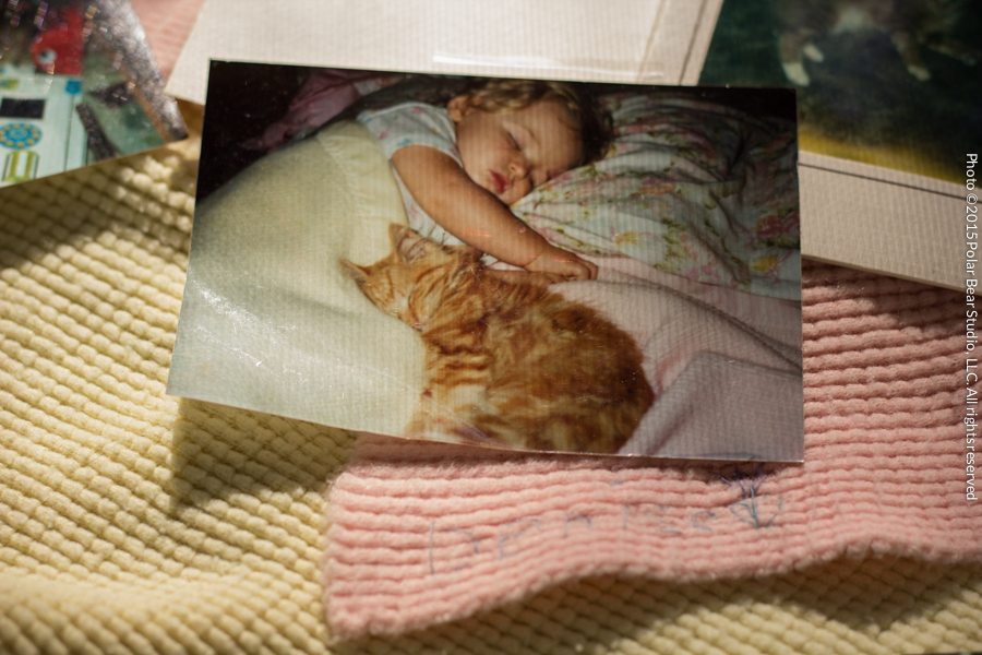 Photo of a baby and orange tabby cat sleeping together, Copyright Polar Bear Studio, LLC