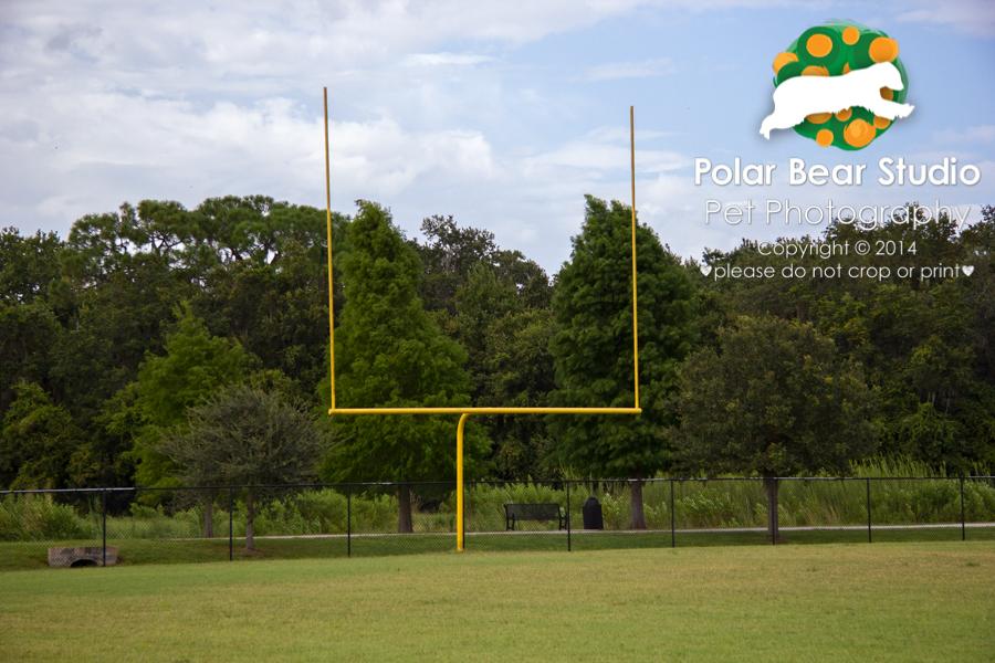 Football field at Buffalo Creek Park in Palmetto, Florida, Photo by Polar Bear Studio