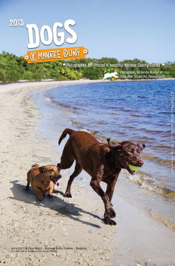 Cover of the Dogs of Manatee County Calendar by Polar Bear Studio