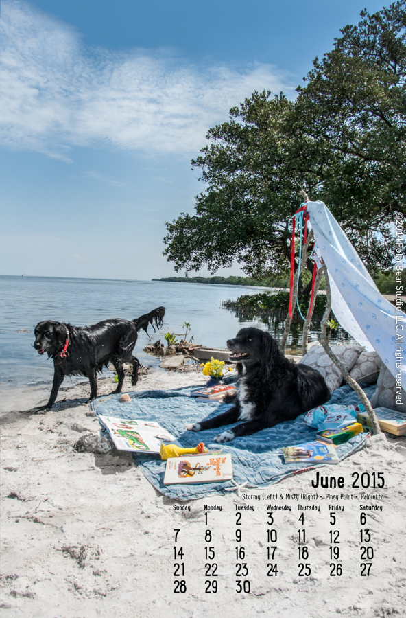June in the Dogs of Manatee County Calendar by Polar Bear Studio