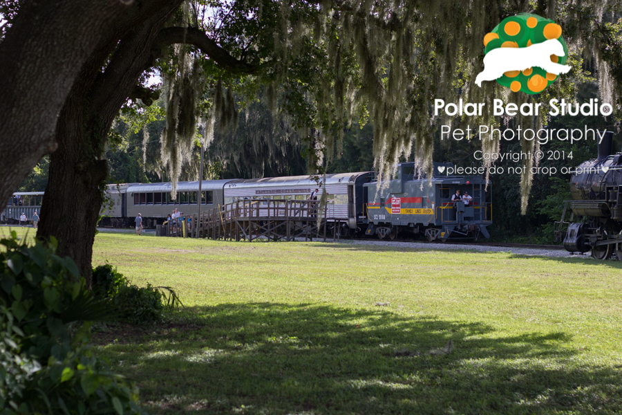 Florida Railroad Museum, Photo by Polar Bear Studio