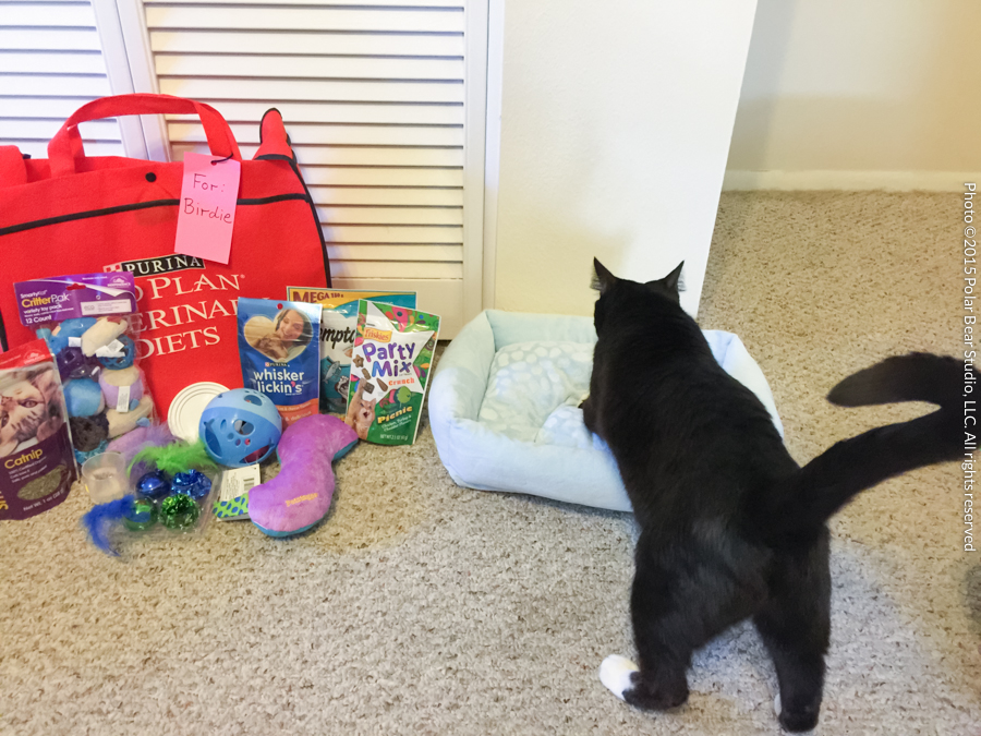 Socks with her gifts from her sponsors