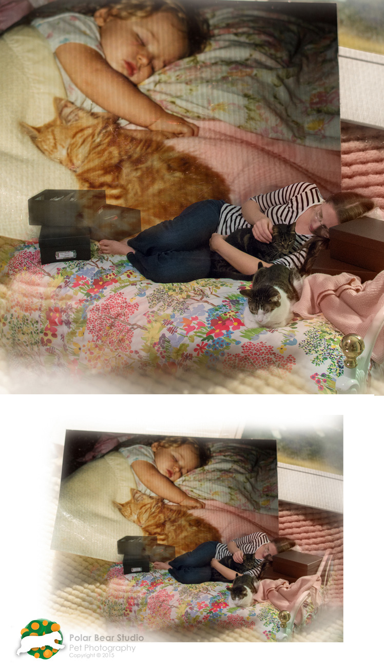 Digital Collage Classic Catnap by Polar Bear Studio